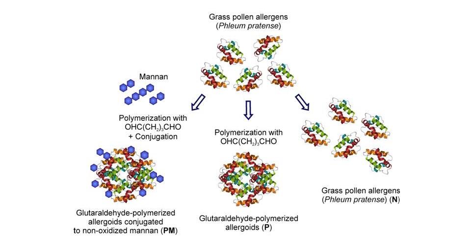 Vacunas alergia
