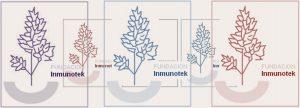 Fundación Inmunotek