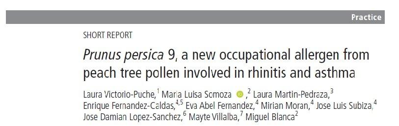 polen de melocotonero